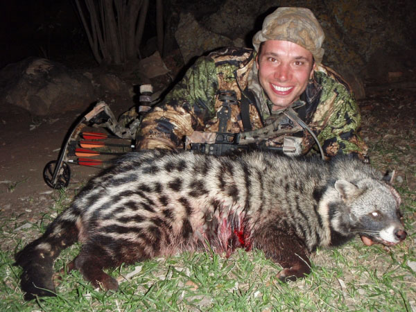 Civet taken with Bow